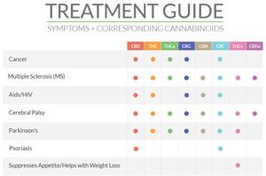 The Shango Medical Cannabis Treatment Guide