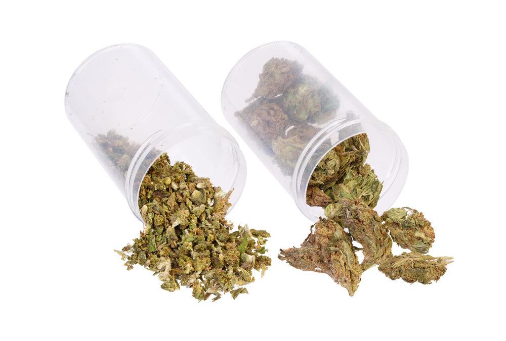 The Many Strains of Medical Marijuana